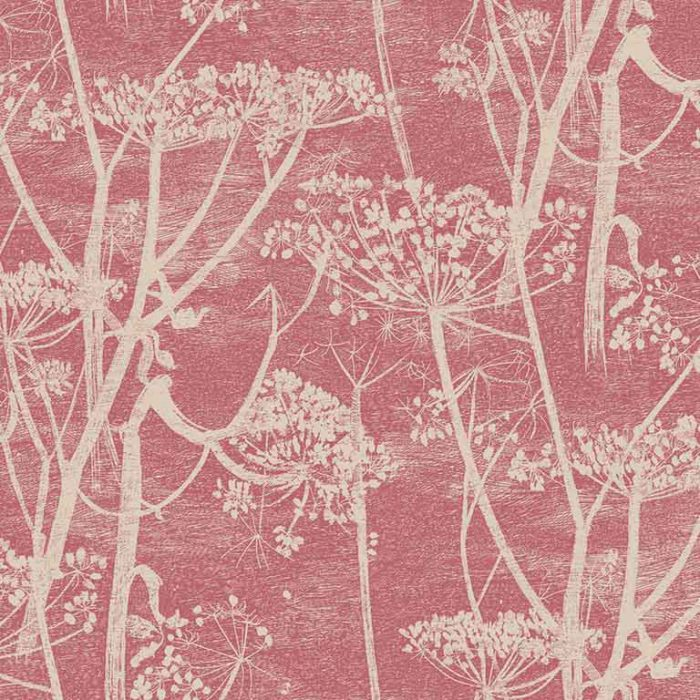 cole and son cow parsley pink