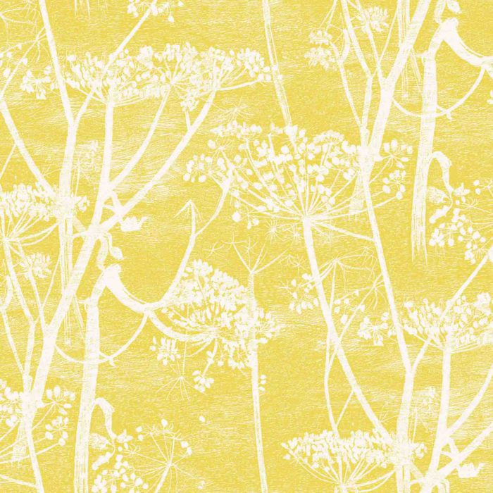 cole and son cow parsley yellow