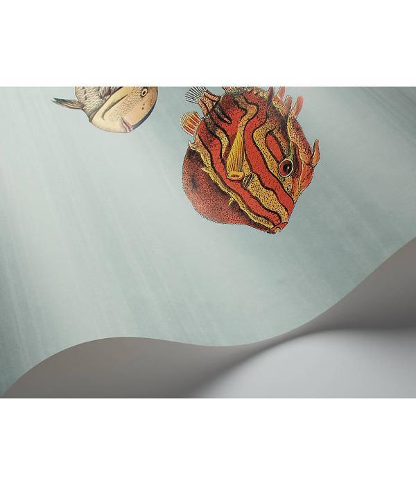 cole & son behang acquario multicolor