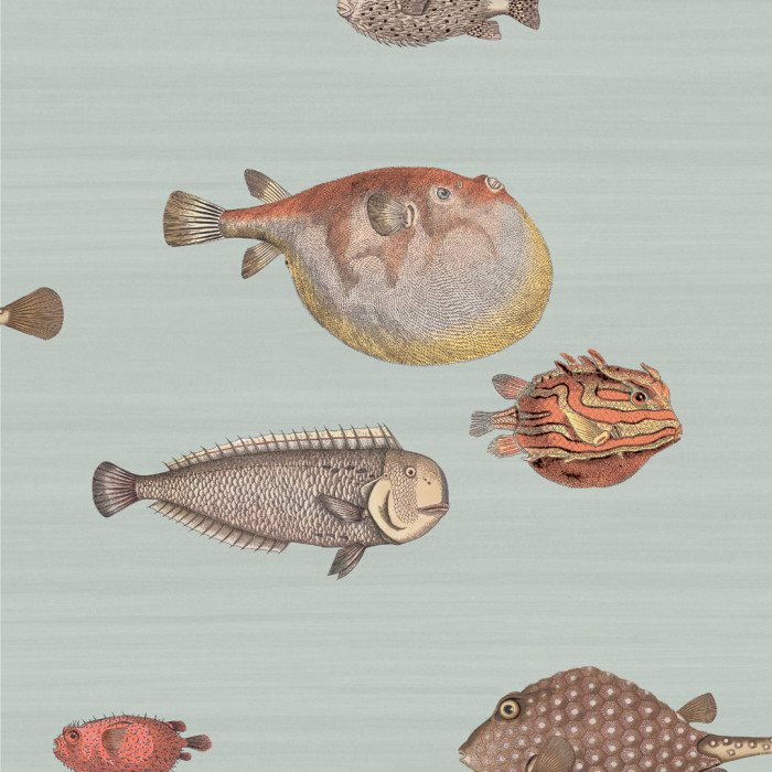 Cole & Son behang Acquario multicolor