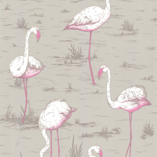 Cole and Son behang - Flamingos sand 66/6042