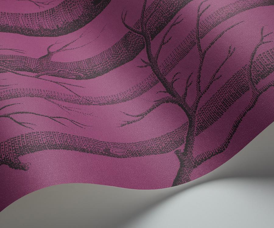 Behang Kinderkamer Regenboog : Cole and Son behang Woods purple ...