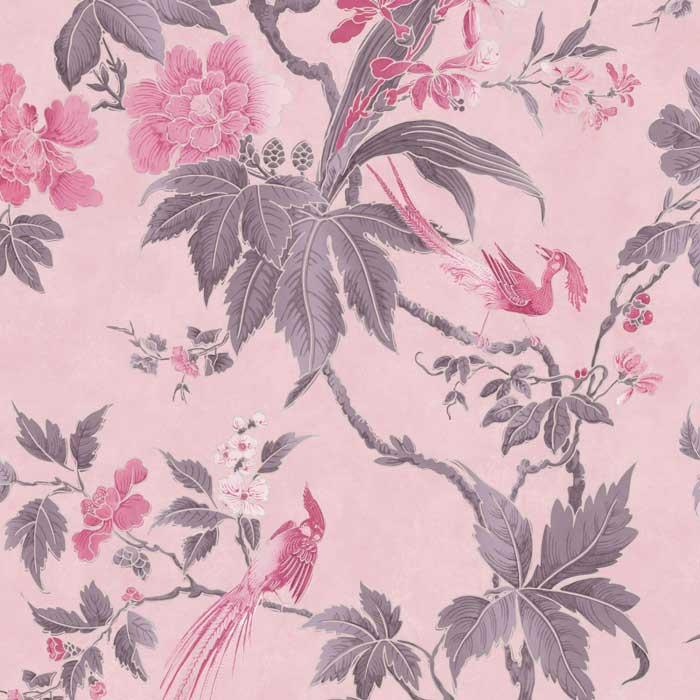 Little Greene Paradise Pink