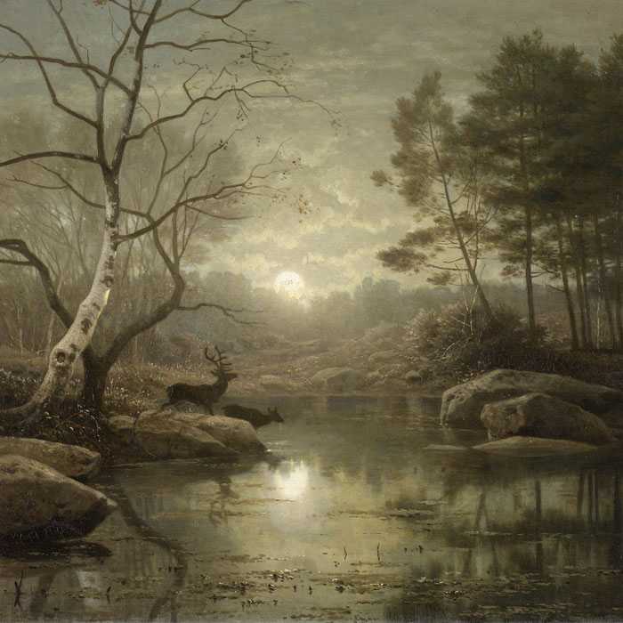 Grutsk behang Boslandschap bij maanlicht