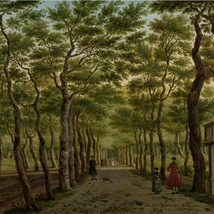 Grutsk behang Herepad in het Haagse Bos