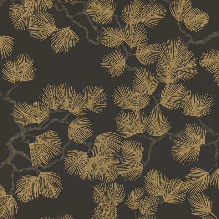 Pine Black