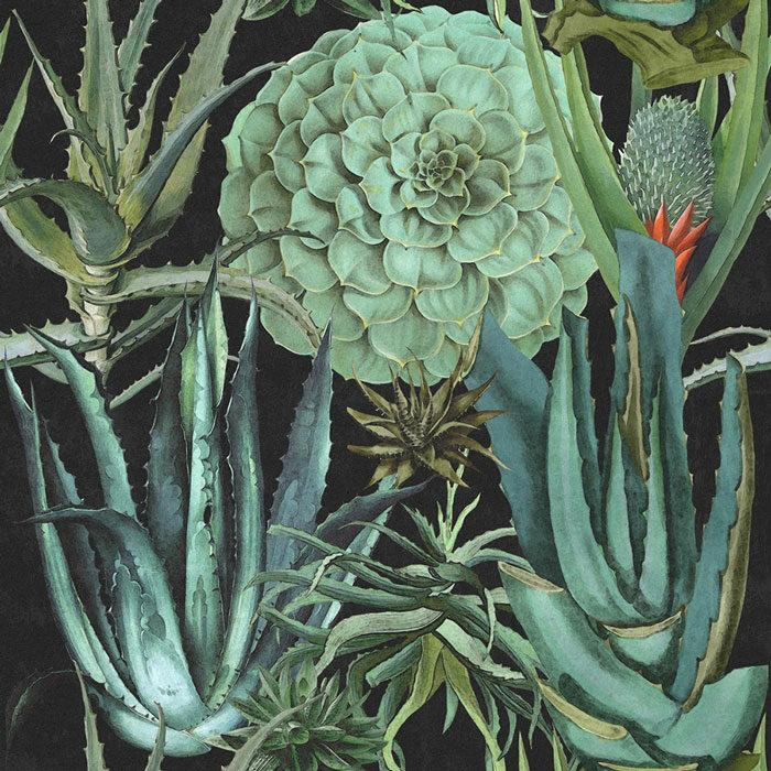 Mind-the-Gap-Succulentus-Anthracite-WP20167