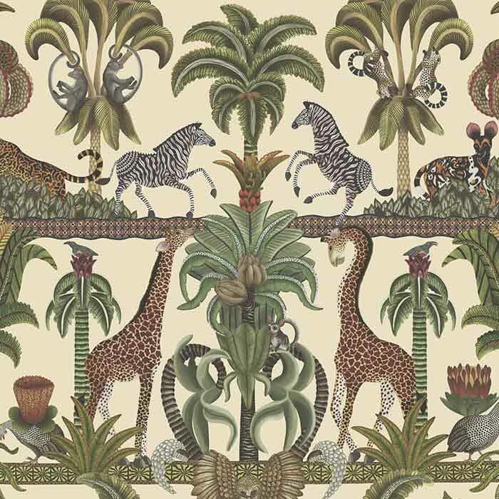 Ardmore Jabula Afrika Kingdom 119/5026
